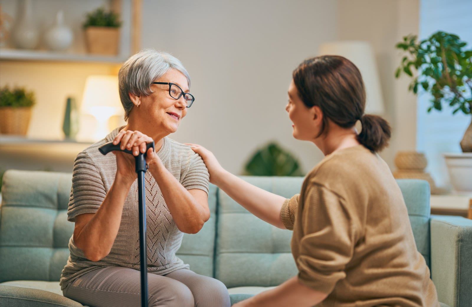 Non-Clinical Home Care