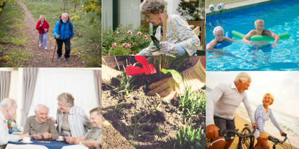 Different Activities that seniors can enjoy
